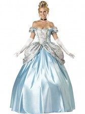 Enchanting Princess Cinderella Costume