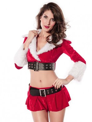Holiday Pleasure Christmas Costume