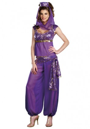 Sexy Genie of the Lamp / Belly Dancer Costume
