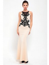 Gorgeous Lace Bodycon Fishtail Evening Party Gown